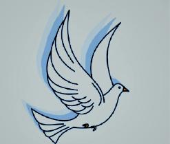 Die Taube gilt als Symbol des Heiligen Geistes.